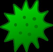 algae in diesel