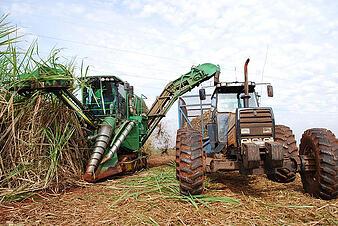 Brazilian Ethanol