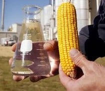 Food Cost Increases Tied To Ethanol Use in Gasoline