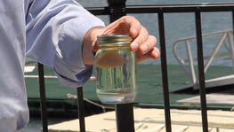 water in fuel tank