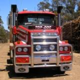 007dieselheavytrucks_compressed-resized-600-1.jpg