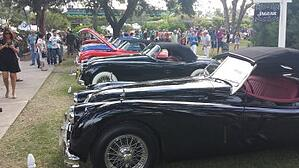 Concours D'Elegance car shows in Winter Park