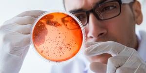 microbial-testing