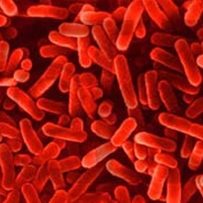 microbes-in-fuel-1